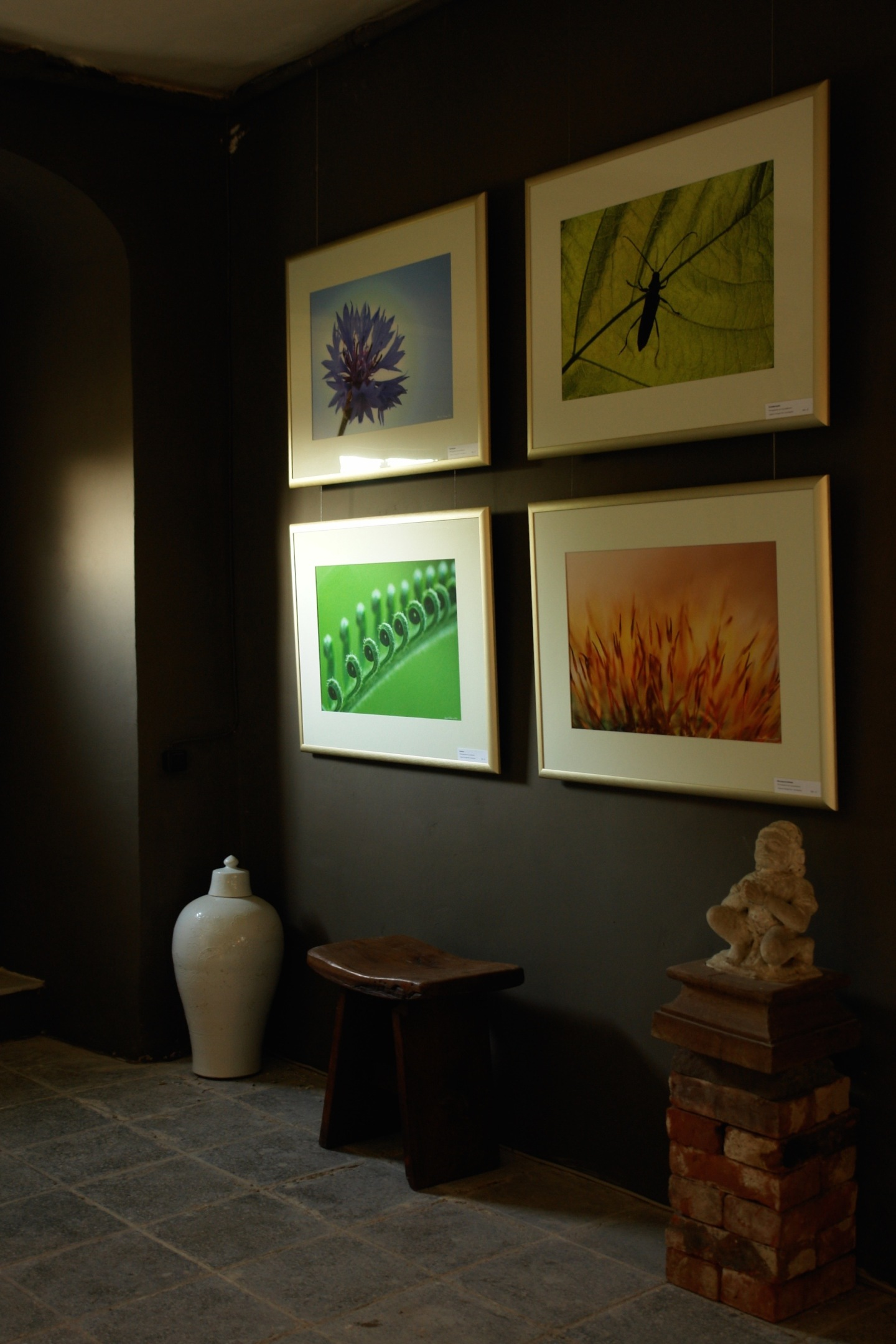 Entrance Hall gallery is now open
